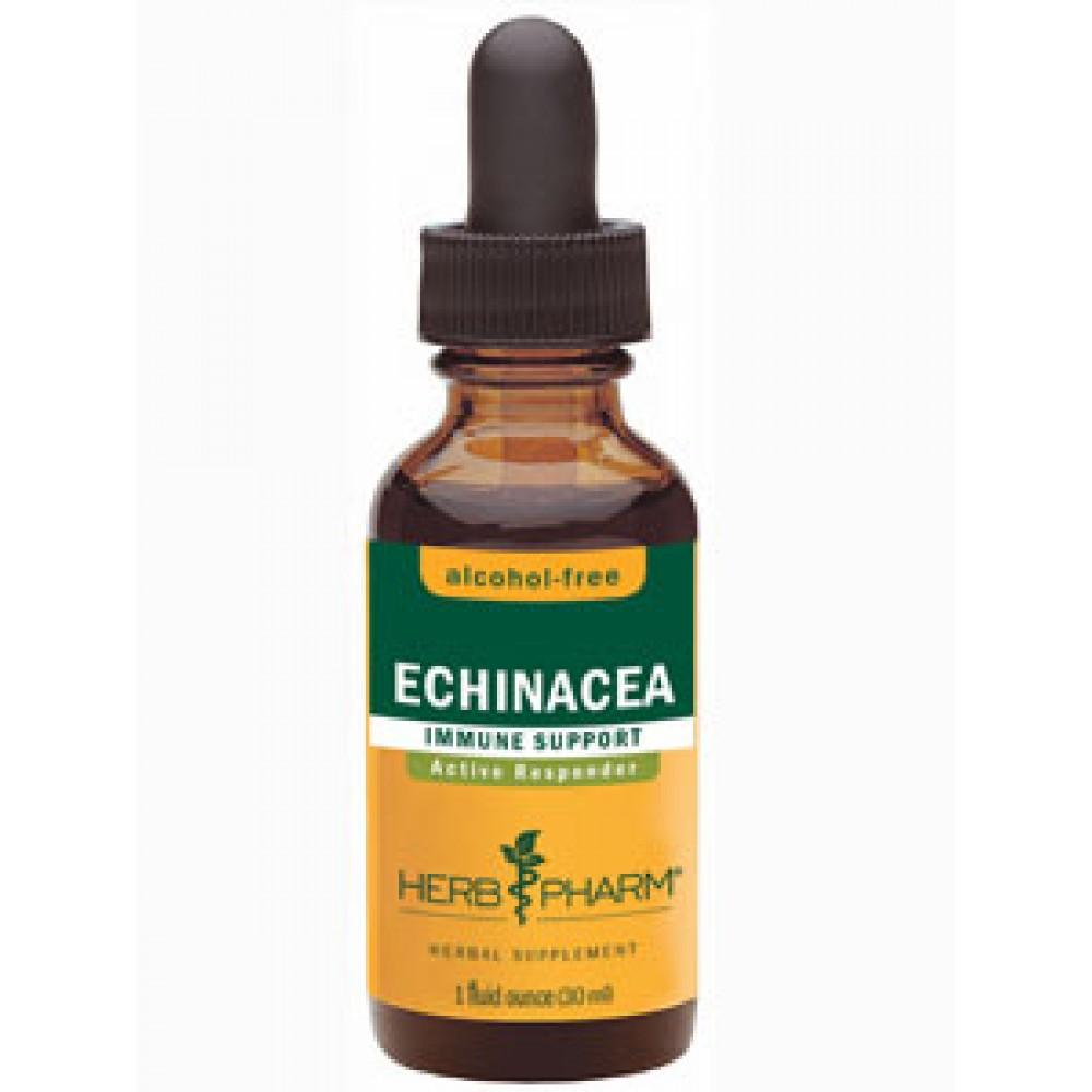 Echinacea (alcohol-free)